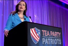 Tea Party Patriots Co-Founder Jenny Beth Martin Wants to Amend Constitution